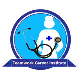 Teamwork Career Institute Online