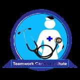 Teamwork Career Institute Online